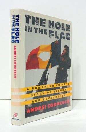 THE HOLE IN THE FLAG