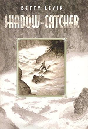 SHADOW-CATCHER