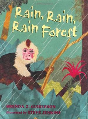 RAIN, RAIN, RAINFOREST