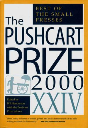 THE PUSHCART PRIZE, XXIV