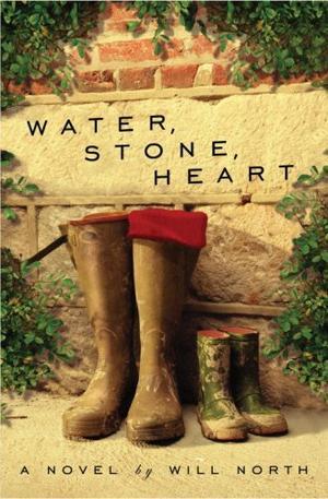 WATER, STONE, HEART