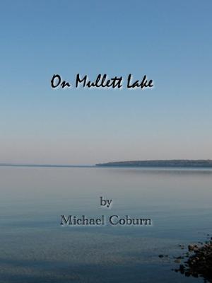 ON MULLETT LAKE