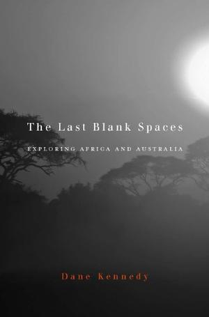 THE LAST BLANK SPACES