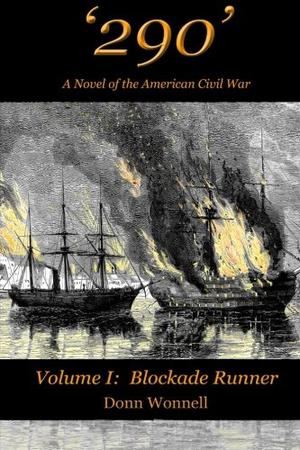 '290' - A Novel of the American Civil War