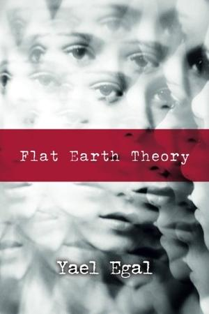 Flat Earth Theory