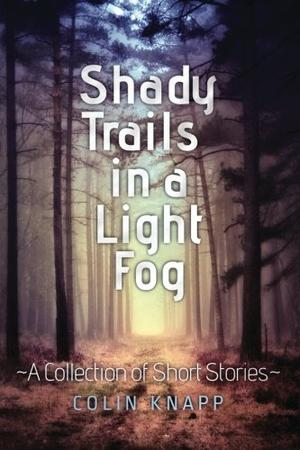 SHADY TRAILS IN A LIGHT FOG