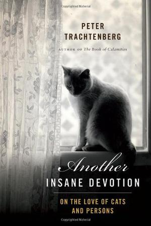 ANOTHER INSANE DEVOTION