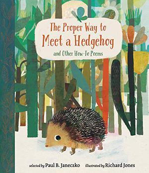 THE PROPER WAY TO MEET A HEDGEHOG