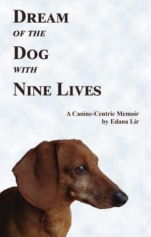 DREAM OF THE DOG WITH NINE LIVES