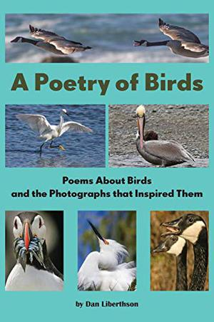 A POETRY OF BIRDS