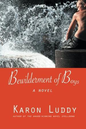Bewilderment of  Boys