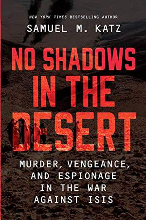 NO SHADOWS IN THE DESERT