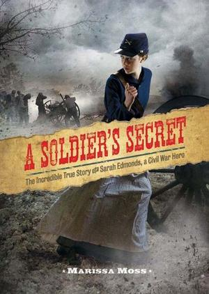 the hardships during civil war in a soldiers secret a novel by marissa moss