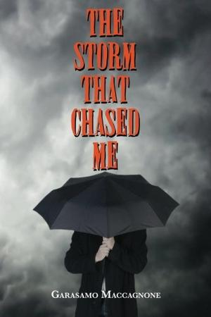 THE STORM THAT CHASED ME