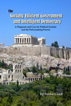 The Socially Efficient Government and Intelligent Democracy