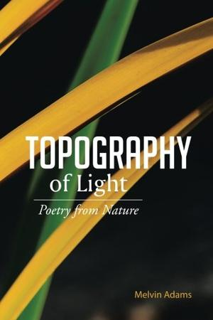 Topography of Light