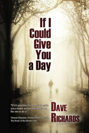 IF I COULD GIVE YOU A DAY