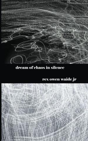 DREAM OF CHAOS IN SILENCE