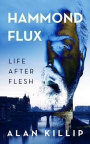 Hammond Flux by Alan Killip