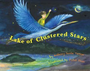 Lake of Clustered Stars